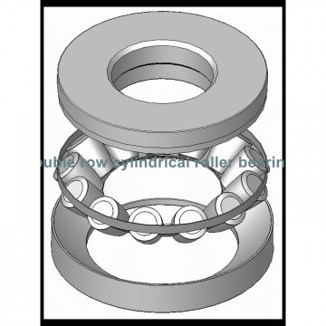 160TDO290-2 Double inner double row bearings TDI